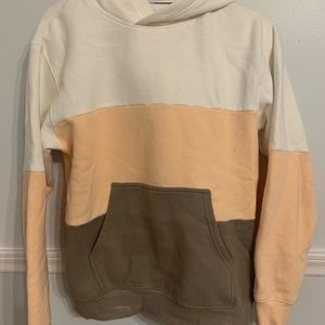 "Aritzia ""The Perfect Hoodie"""